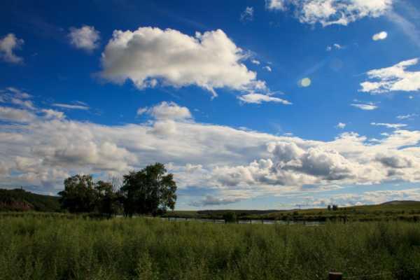 呼伦贝尔,梦想中的青青草原图片