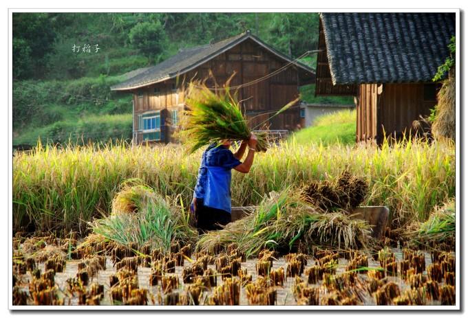 侗族贵州木房子装修图片
