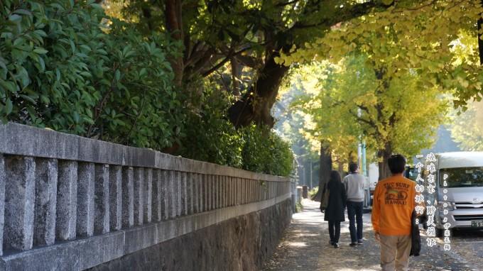原宿手绘树叶壁纸