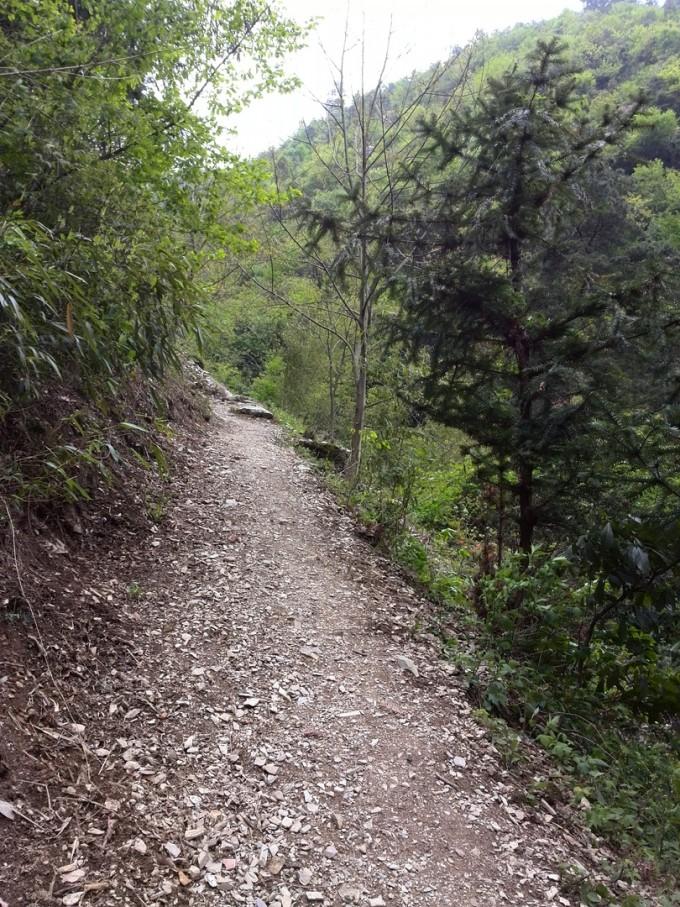 。又走了大约一个多小时到了大鄣村,道路变成了宽阔的水泥路,沿途还有两个公交招呼站,经过一个矿区,终于看到了鄣山大峡谷的地标百丈岩,到景区入口又走了半个小时,鄣山大峡谷其实就是刚才几小时路程的延续,只是两山夹一溪更紧些,溪流还是那条溪流,可以下到谷底溪边亲水,为此要付出代价门票60元,优惠票30元。溪流在谷底百转千回,时缓时急,或平静如潭,或飞溅似瀑,两岸植被茂密,穿行期间清凉无比,好似一个天然大氧吧。鄣山大峡谷并不大,慢慢走最多一个半小时就到头了,我们出的是正门,但没有任何公交车或接驳车可送我们出去,只