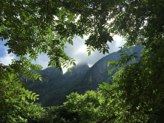 狮子月的魅惑——青峰峡森林公园清凉行