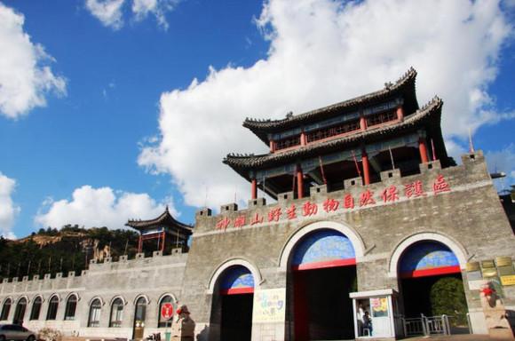 """全名""""神雕山野生动物自然保护区""""位于山东省威海(荣成)市成山镇西霞口"""