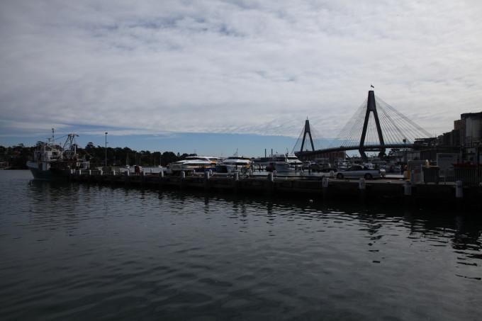 澳大利亚的秋天(7)悉尼……海鲜市场