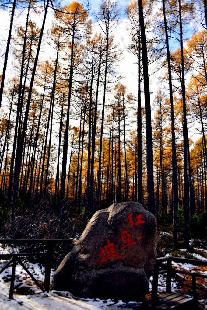 """大兴安岭。 整体印象:提起呼伦贝尔,最容易让人想到是一片绵延无际的绿色大草原。其实,除了草原外,呼伦贝尔的旅游资源十分丰富多样,有亚洲第一的湿地,有白桦林,有充满俄罗斯风情的边陲小镇,有大兴安岭的森林,有中国第四大内陆湖风光,还有中俄边境重要的陆路口岸城市满洲里。记得去年一家网络刊物在列举国内最美的风光旅游地和最佳美食时,把呼伦贝尔放在了必去旅游的首席之地。 最推荐的景点:根河湿地和大兴安岭森林景色是去呼伦贝尔的必看项目。 最念念不忘的美食:呼伦贝尔的特色美食有草原风味""""全羊宴"""",手把"""